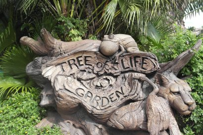 @ Disney's Animal Kingdom